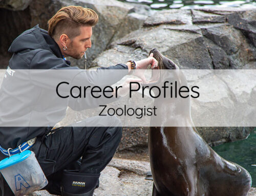 Career of the month: Zoologist