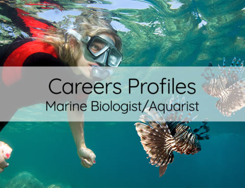 Career of the month: Marine Biologist